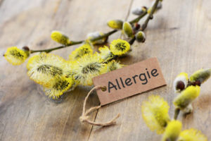 allergie_startseite02